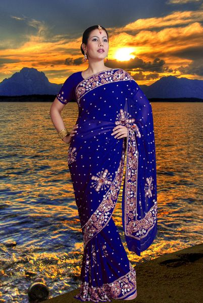 Party Wear Embroidered Saree. - Click Image to Close